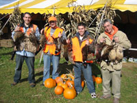 Fall Pheasants