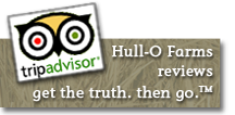 Hull-O Farms Trip Advisor reviews